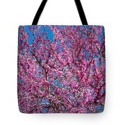 Redbud Tree With Dense Blossoms Tote Bag