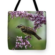 Redbud With Grosbeak Tote Bag