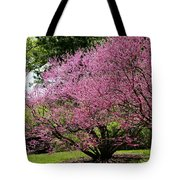 Redbuds In Action Tote Bag