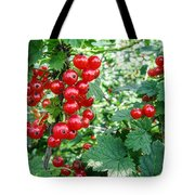 Redcurrant Berries Tote Bag
