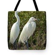 Reddish Egret Egretta Rufescens Pair Tote Bag