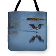 Reddish Egret Looking For Lunch Tote Bag