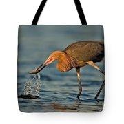 Reddish Egret Strike Tote Bag