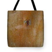 Redgum Tree Tote Bag