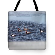 Redhead And Scaups Ducks Tote Bag