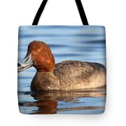 Redhead Duck At St. Mark's Tote Bag