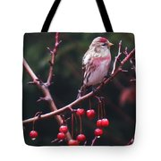 Redpoll On Crabapple Tree Tote Bag