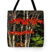 Reds And Greens Tote Bag