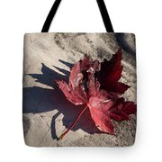 Reds And Purples - Deep Red Maple Leaf And Its Shadow Tote Bag