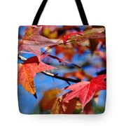 Reds Of Autumn Tote Bag
