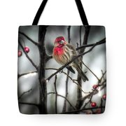 Reds Of Winter Tote Bag
