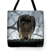 Redtail Hawk And Mouse Tote Bag
