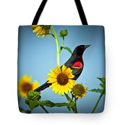 Redwing In Sunflowers Tote Bag