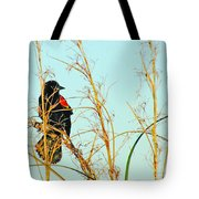 Redwing Lacassine  Tote Bag