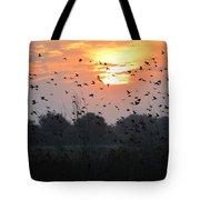 Redwing Sunset Tote Bag
