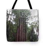 Redwood Fairy Ring Tote Bag