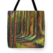 Jedediah Smith Redwoods State Park Tote Bag