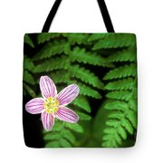 Redwood Sorrel Wildflower Nestled In Ferns Tote Bag