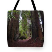 Redwood Tote Bag