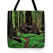 Redwoods Wonderland Tote Bag by Benjamin Yeager