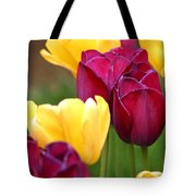 Redyellowtulips6728 Tote Bag