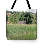 Reed Shore Tote Bag