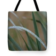 Reeds And Rain Tote Bag