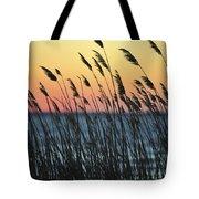 Reeds At Sunset Island Beach State Park Nj Tote Bag