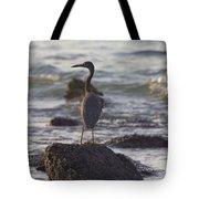 Reef Egret Tote Bag