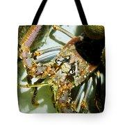 Reef Lobster Close Up Spotlight Tote Bag
