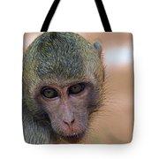 Reese's Monkey Portrait Tote Bag