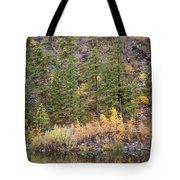 Reflect Autumn Tote Bag