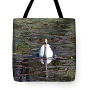 Reflected Beauty Tote Bag