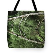 Reflected Branch Tote Bag