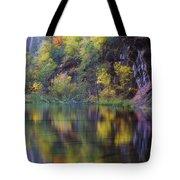 Reflected Fall Tote Bag