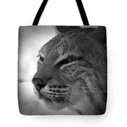 Reflecting Bobcat... Tote Bag by Christena Stephens