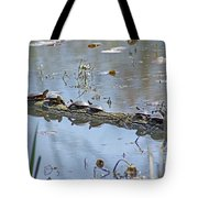 Reflecting On The Nice Spring Weather Tote Bag