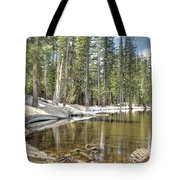 reflecting pond 2 Carson Spur Tote Bag