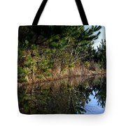 Reflecting Puddle At The Beach Tote Bag