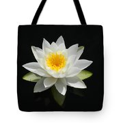 Reflecting Water Lilly IIi Tote Bag