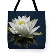 Reflecting Water Lilly Tote Bag