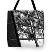Mirror Image Palm Springs Tote Bag