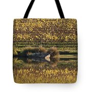 Reflection-country-victoria  Tote Bag