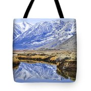 Reflection From Genoa Ln Tote Bag