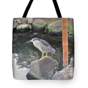 Reflection Of A Black-crowned Night Heron Tote Bag