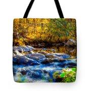 Reflection Of Autumns Natural Beauty Tote Bag
