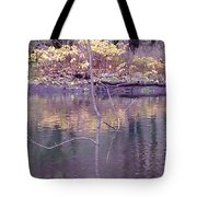 Reflection Of Fall Tote Bag