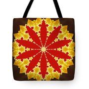 Reflection Of Fire Tote Bag