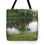 Reflection Of Life  Tote Bag