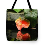 Reflection Of My Soul Tote Bag
